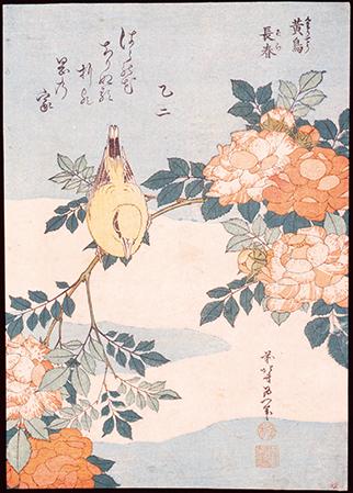 プリティ-♡プリント 江戸の花鳥版画展のイメージ