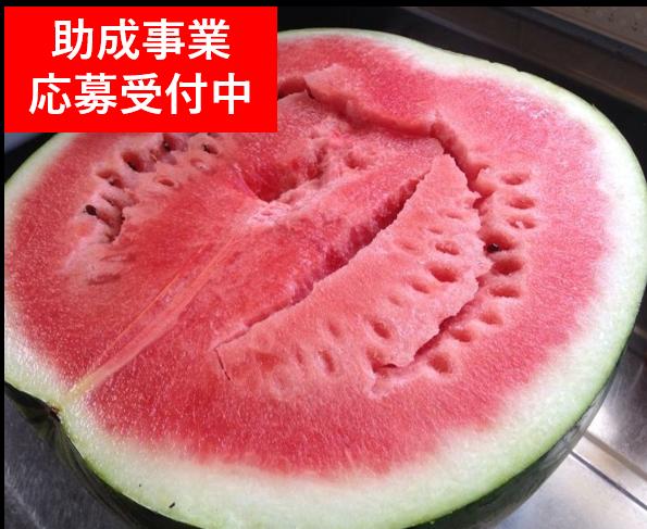 助成制度のご案内(6月29日〜)のイメージ