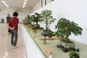 第52回 柳井市生活芸術展覧会のイメージ