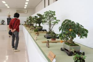 第53回 柳井市生活芸術展覧会のイメージ