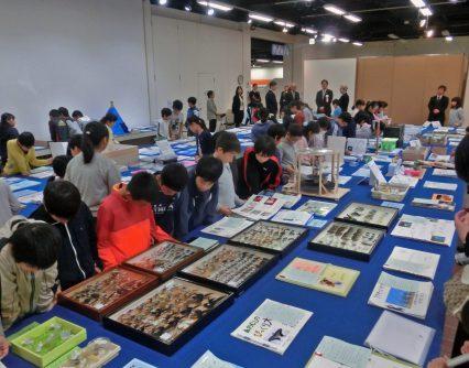 サイエンスやまぐち2019 第73回山口県科学作品展